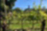 Schermafbeelding 2020-05-09 om 10.44.28