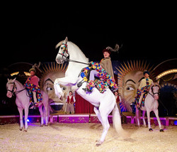 Giffords Circus, Andrew Rees Photo