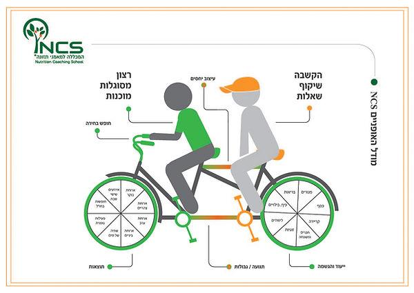 אופניים 2 מכללה 2018.jpg