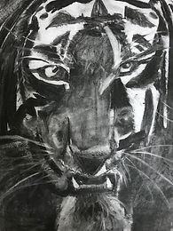 roaring tiger1.JPG