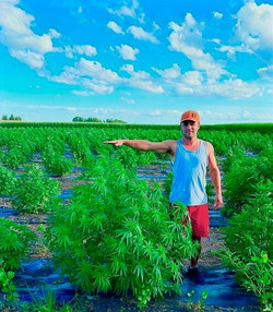 Ben%20with%20big%20plant%20in%20field%20