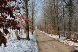 Oprijlaan Huiskenshof winter