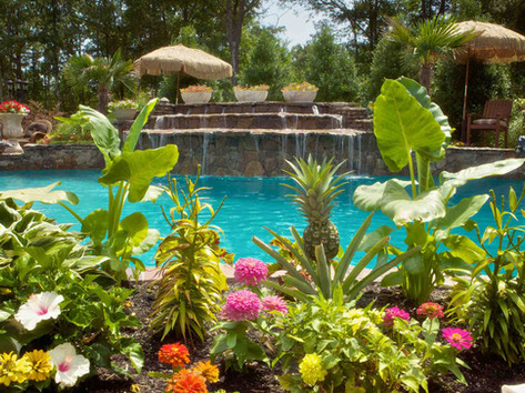 Fiberglass pool with waterfall and landscaping built by Butler Pool and Spa
