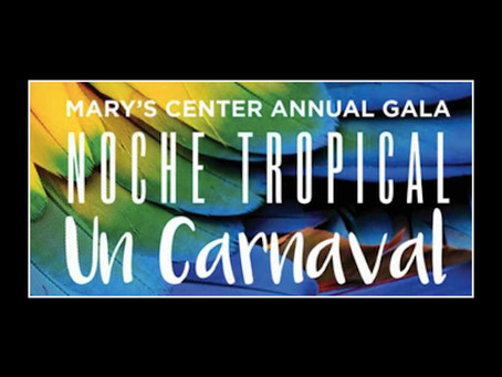Mary's Center's Annual Gala Noche Tropical