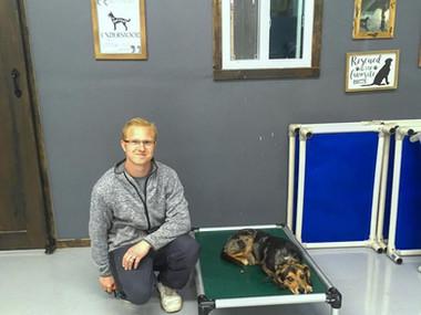 local dog trainer jason decort