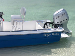 Things to Consider Before You Purchase a Panga Boat
