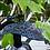 Thumbnail: handpainted pickguard (gibson sg)