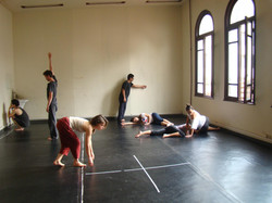 projeto Corpo como cruzamento de intensidades (2013)