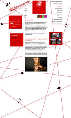 INTRUÇÕES - DESDOBRAMENTOS (2008)