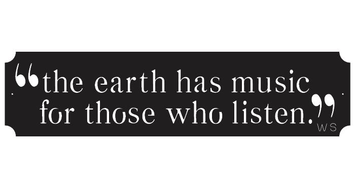 Earth Has Music