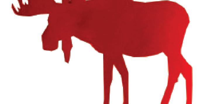 Moose-Small
