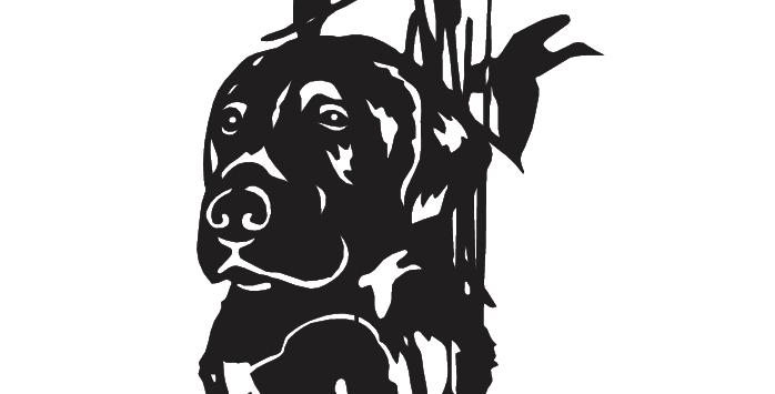 Dog In Dog Scene