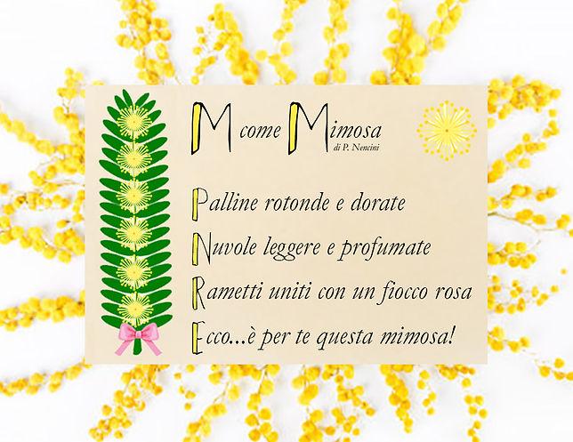 mimosaa.jpg