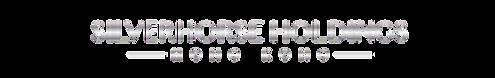 Silver Logo Transparent Background_ .png