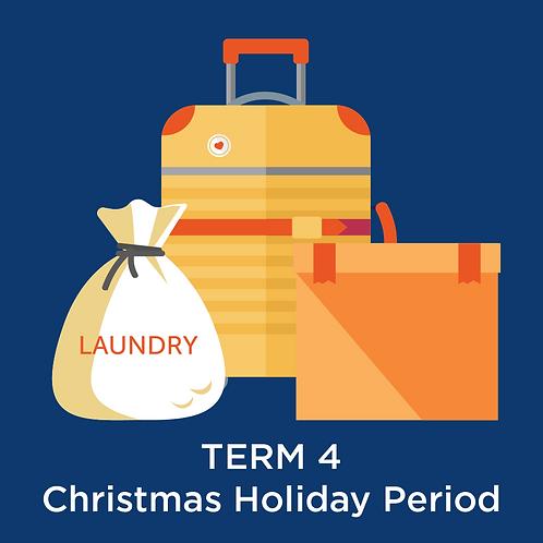Premium Storage - Term 4
