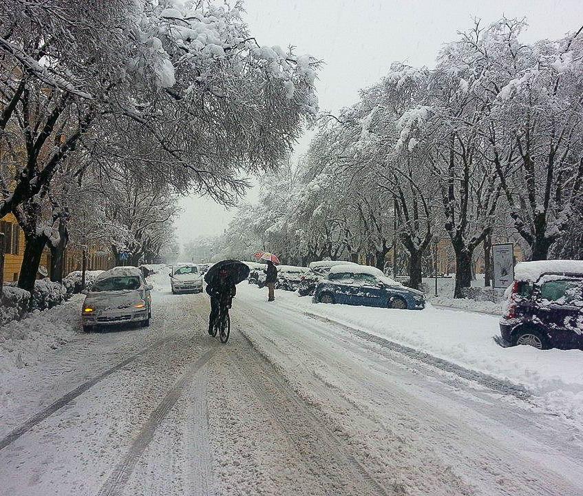 Snowy Modena