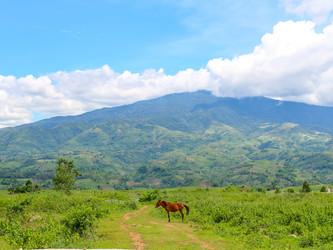 Negros Occidental, Philippines