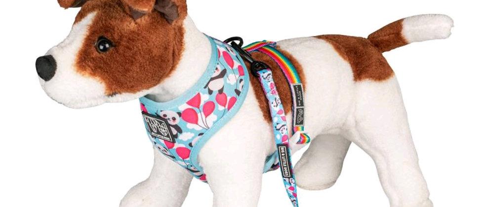 Beary Cute Dog Leash