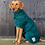 Thumbnail: Classic Dog Drying Coat - Fabric Trim