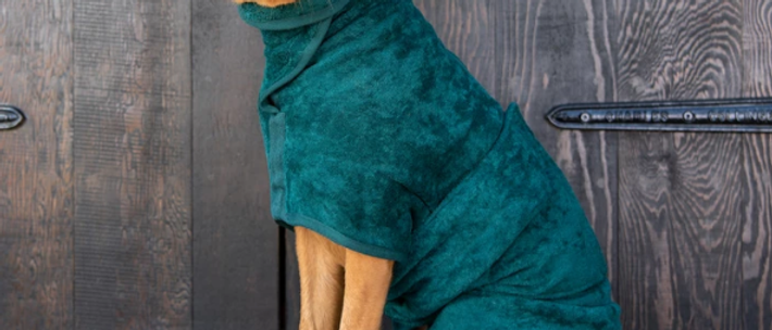 Classic Dog Drying Coat - Fabric Trim