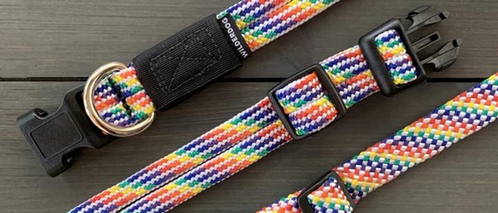 Rainbow Collar - WilderDog