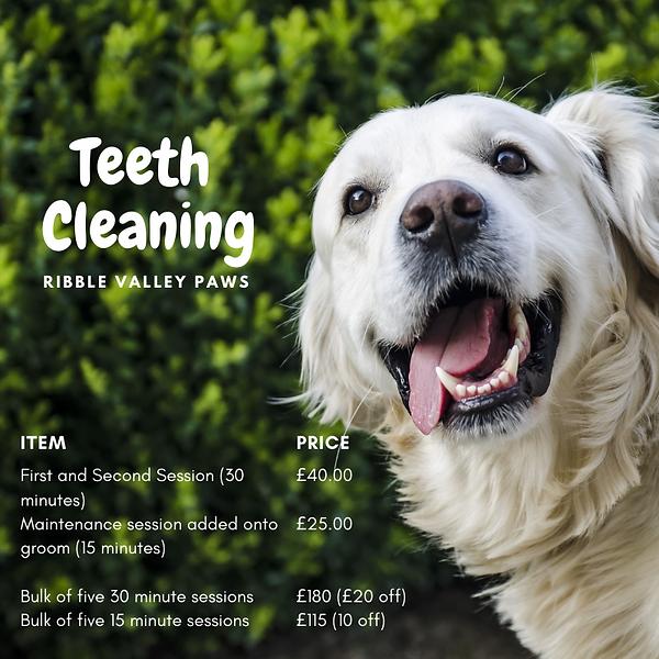 Cleany Teeth Price List