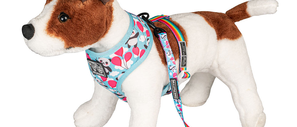 Reversible Dog Harness - Beary Cute