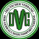 dvg_logo.png