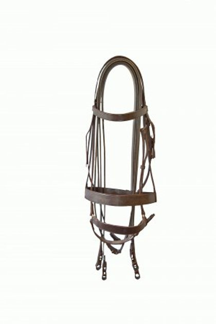 COMPLETE GAG BRIDLE
