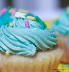 blue iced cupcake.jpg