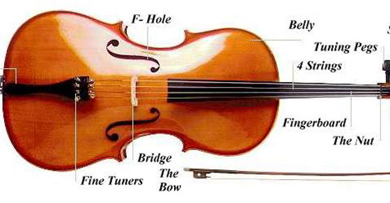 Basic info about a Cello
