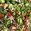 Thumbnail: Pickled Jalapeno + Fresno Peppers