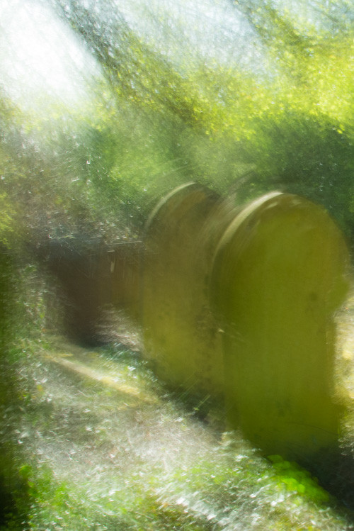 Another impressionistic photo