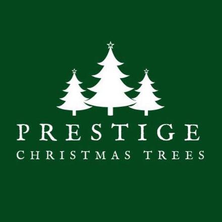 Prestige Chrsitmas Campaign