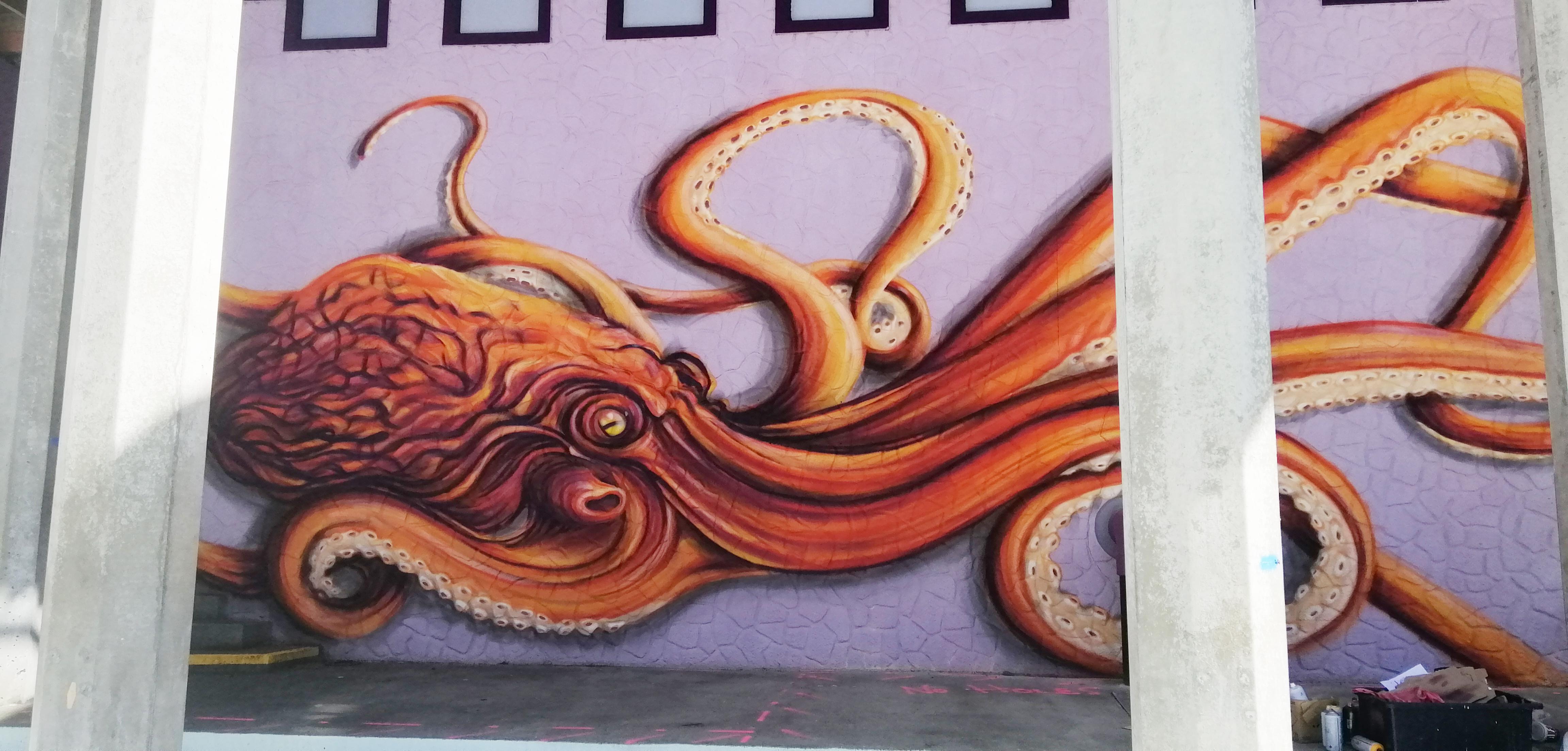 octopus full 1