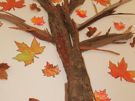 O Outono chegou ao Pomar!