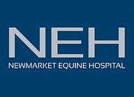 NEH-Generic-logo.png