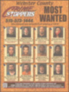 crimestoppers%200302_Page_1_edited.jpg