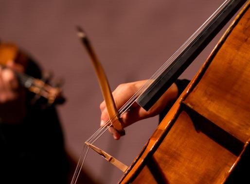 Im Fokus: Das Cello