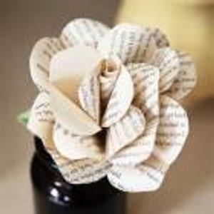 Literary rose