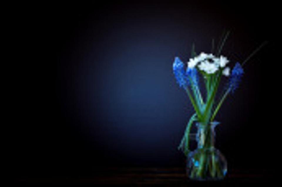flowers-1392392_960_720