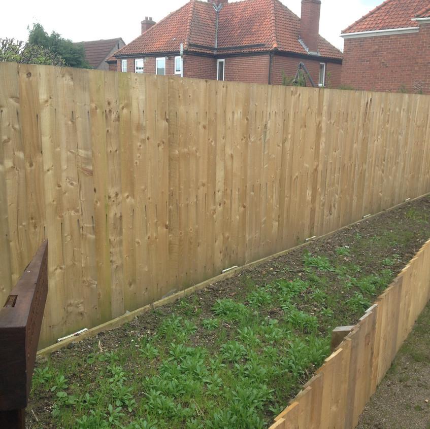 Large Feather Edge Fence
