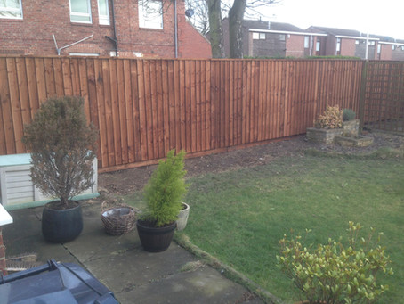 Hedge Removal + Close Boarded Overlapping Fence with Capping