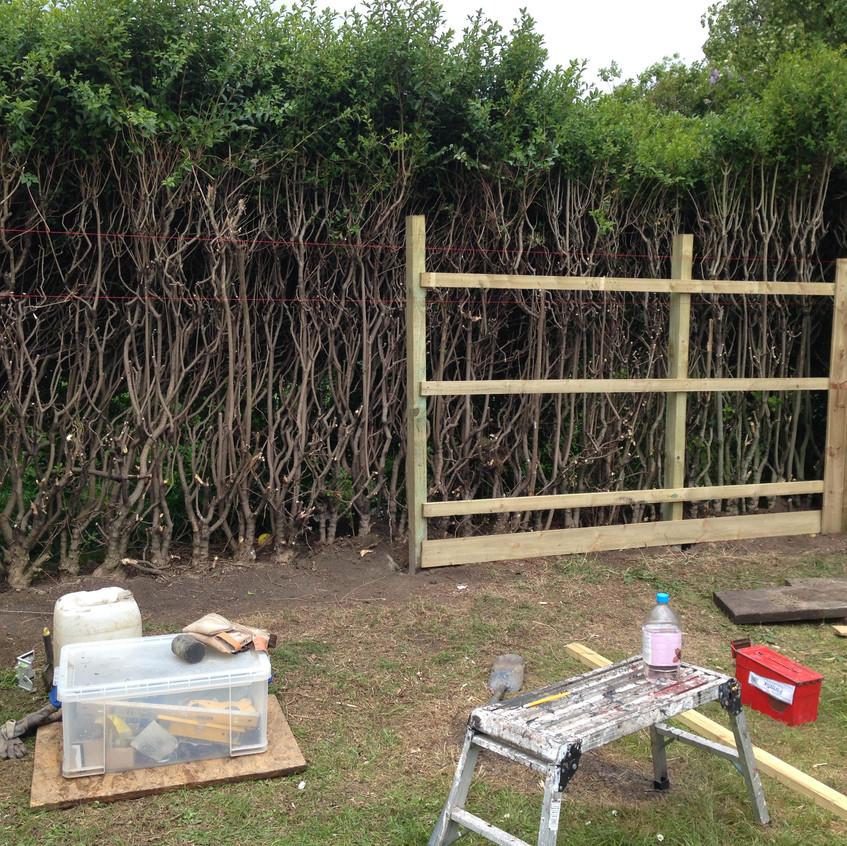 Garden Fencing Services Newcastle
