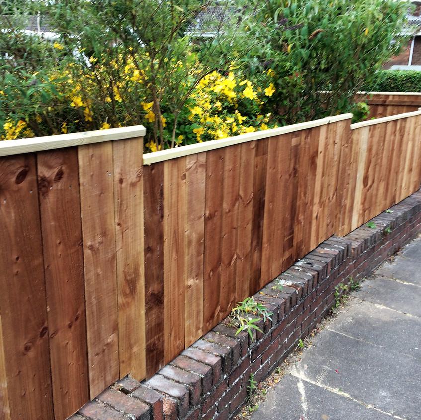 Fencing Gateshead (1)