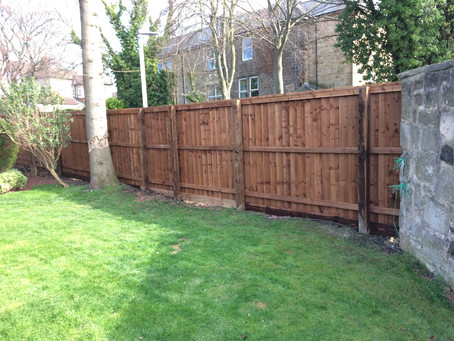 Overlapping boards for a striking looking fence with no expansion gaps.....ever