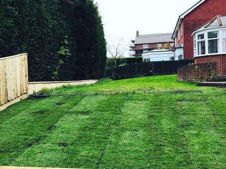 We also offer Landscaping & Re-turfing Services