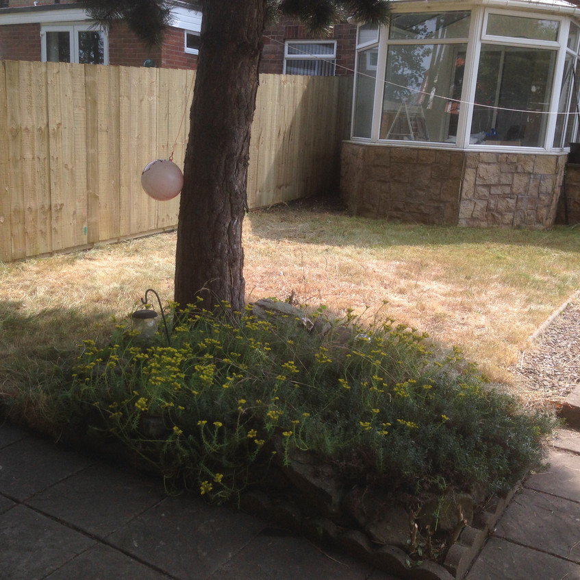 pro fencing & landscaping