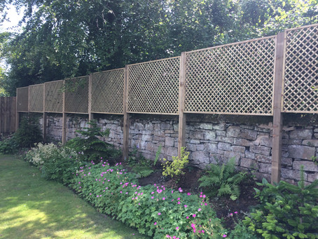 Trellis can add more privacy and completely change the look of your garden - See this fantastic exam