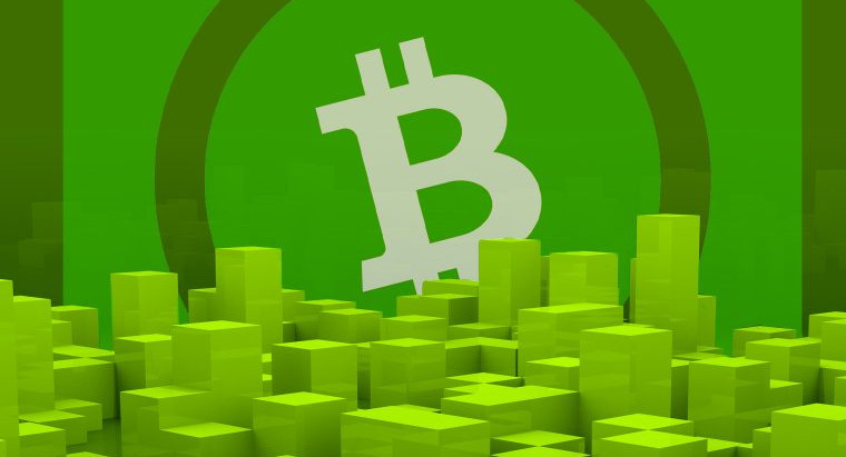 """Kim Dotcom Will Help To Create The """"Killer App"""" To Bring Bitcoin Cash To The Masses"""